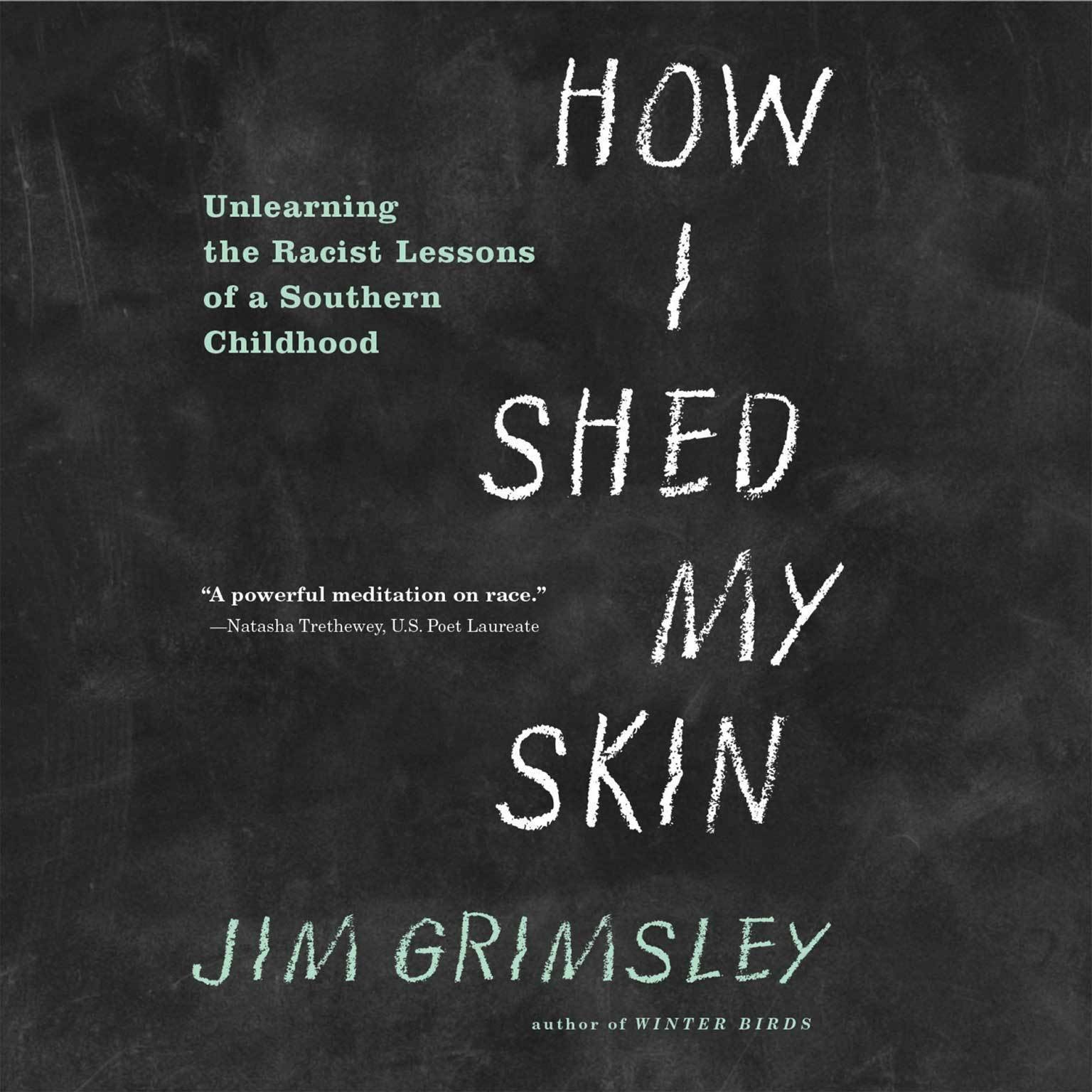 Printable How I Shed My Skin: Unlearning the Racist Lessons of a Southern Childhood Audiobook Cover Art