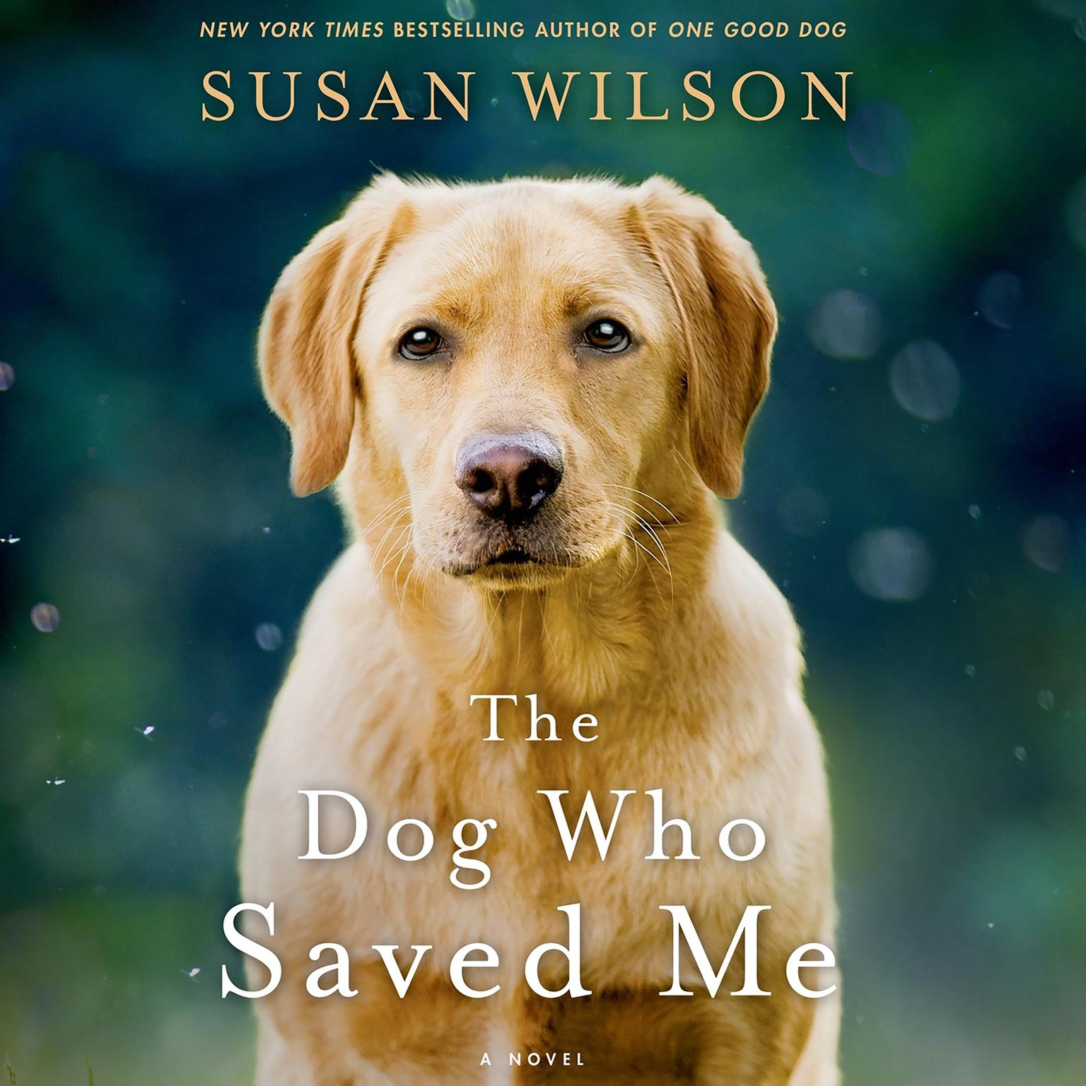 Printable The Dog Who Saved Me: A Novel Audiobook Cover Art