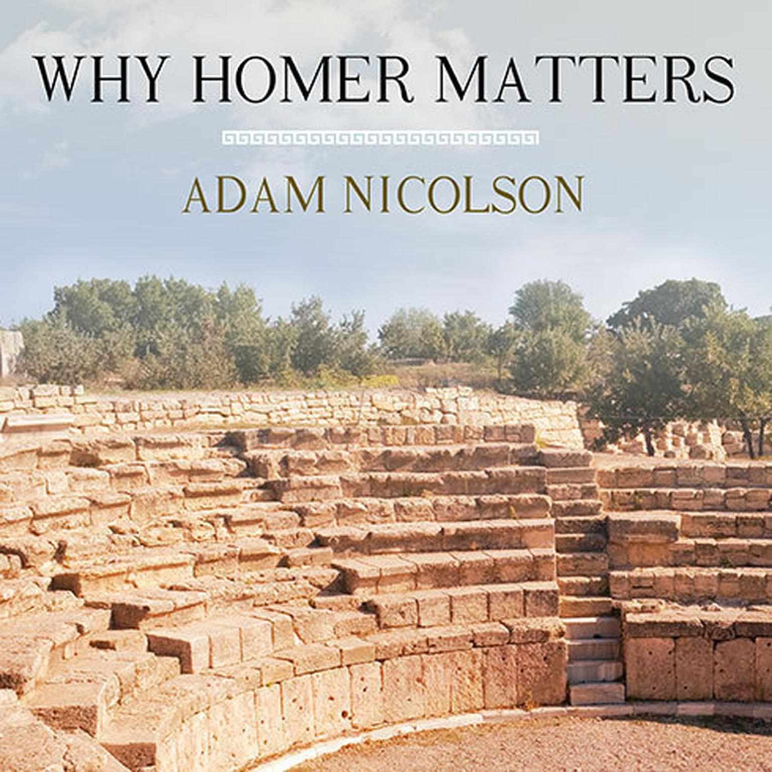 Printable Why Homer Matters Audiobook Cover Art
