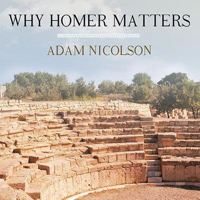 Why Homer Matters Audiobook, by Adam Nicolson