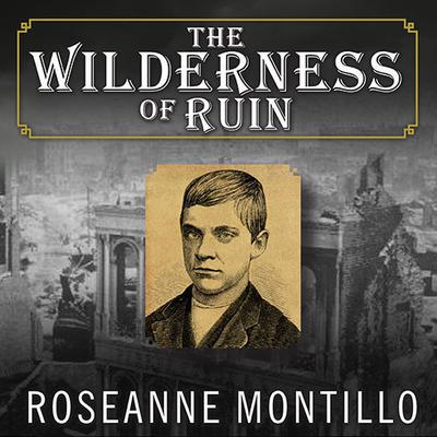 The Wilderness of Ruin: A Tale of Madness, Fire, and the Hunt for Americas Youngest Serial Killer Audiobook, by Roseanne Montillo