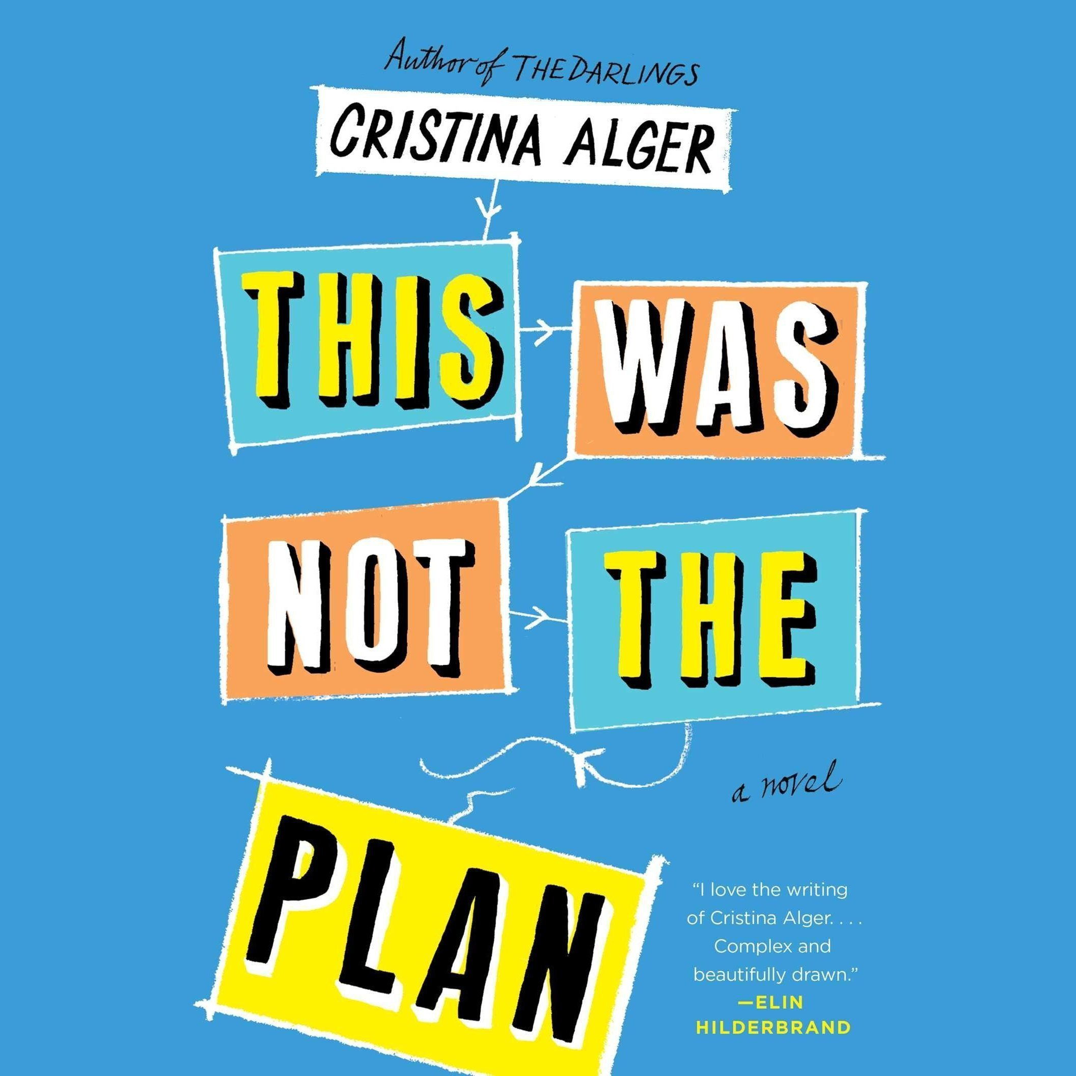 Printable This Was Not the Plan: A Novel Audiobook Cover Art