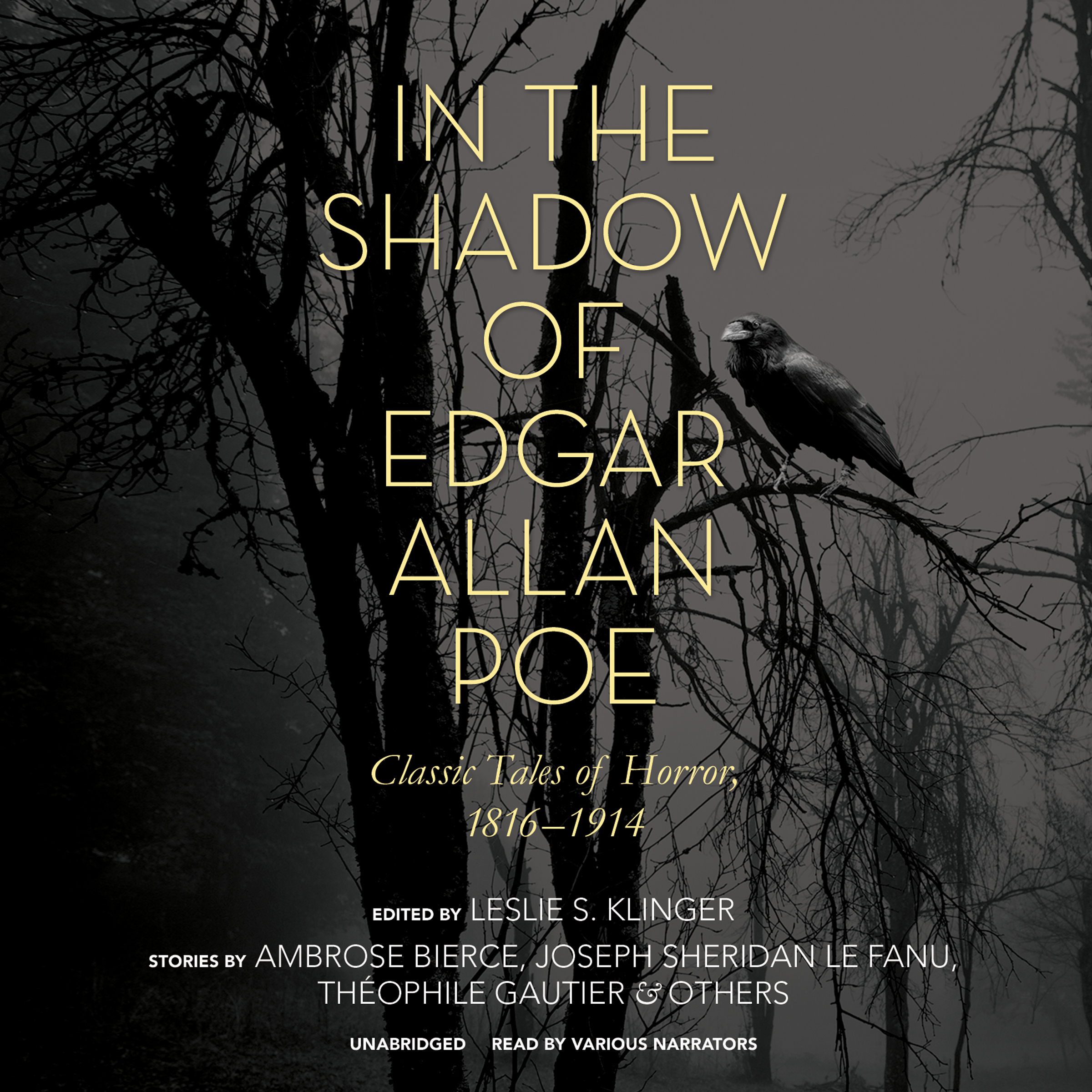 Printable In the Shadow of Edgar Allan Poe: Classic Tales of Horror, 1816–1914 Audiobook Cover Art