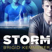 Storm Audiobook, by Brigid Kemmerer