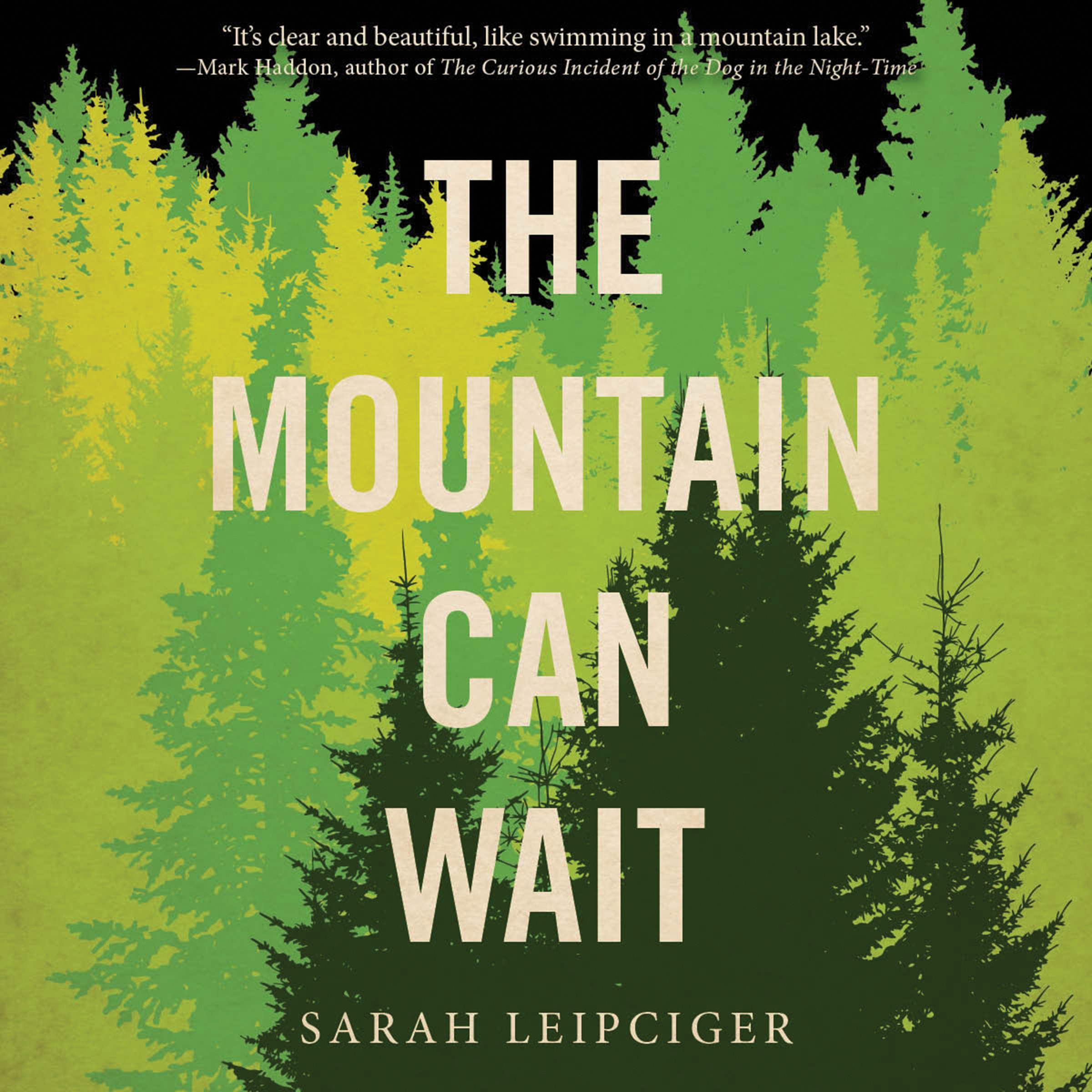 Printable The Mountain Can Wait Audiobook Cover Art