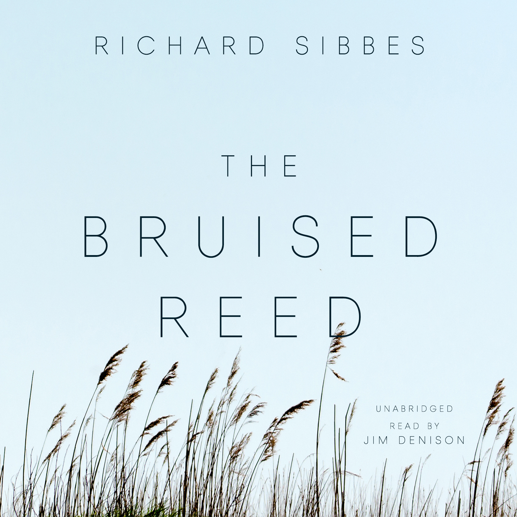 Printable The Bruised Reed Audiobook Cover Art