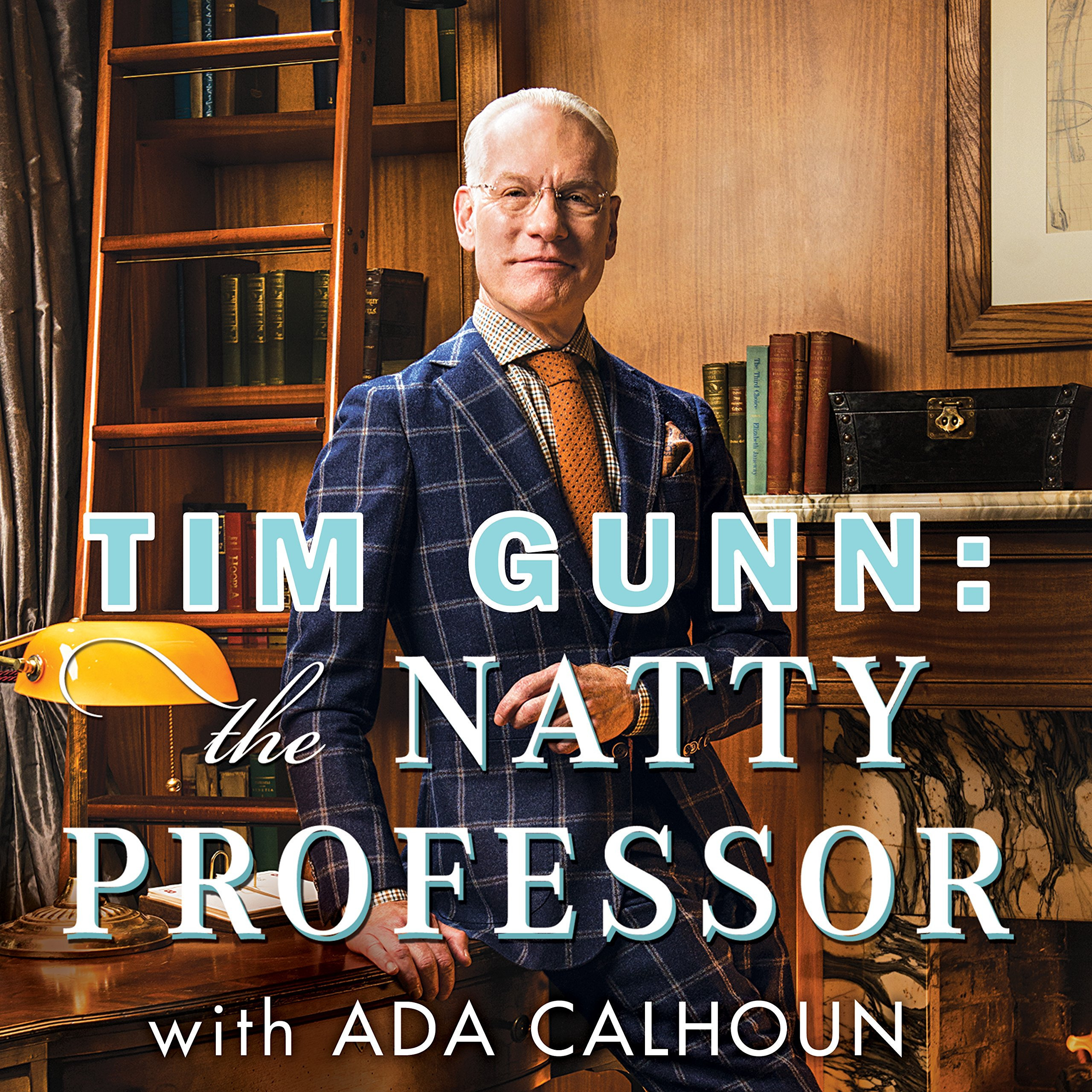 Printable Tim Gunn: The Natty Professor: A Master Class on Mentoring, Motivating and Making It Work! Audiobook Cover Art