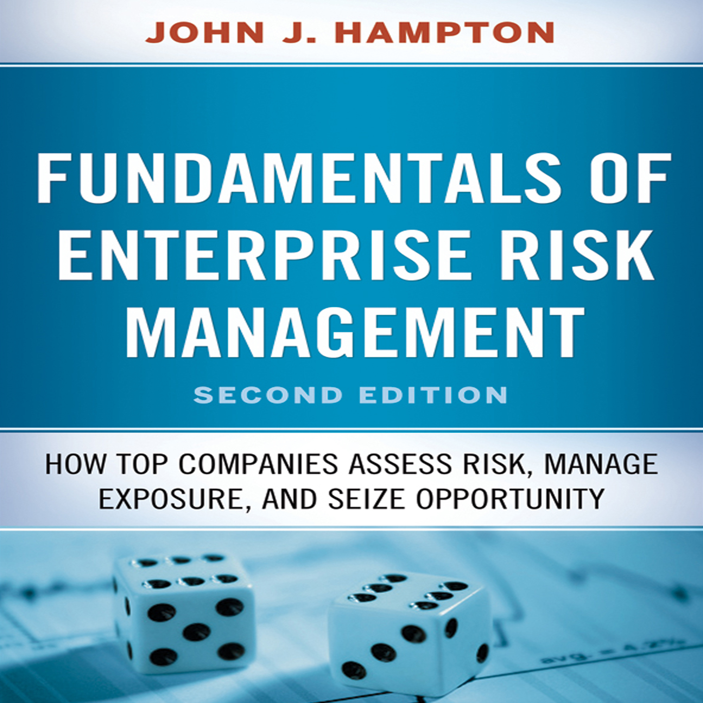Printable Fundamentals of Enterprise Risk Management: How Top Companies Assess Risk, Manage Exposure, and Seize Opportunity Audiobook Cover Art
