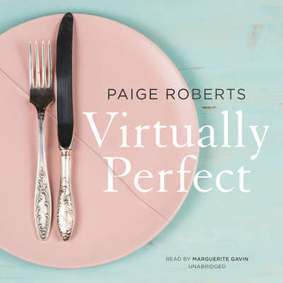 Virtually Perfect Audiobook, by Paige Roberts