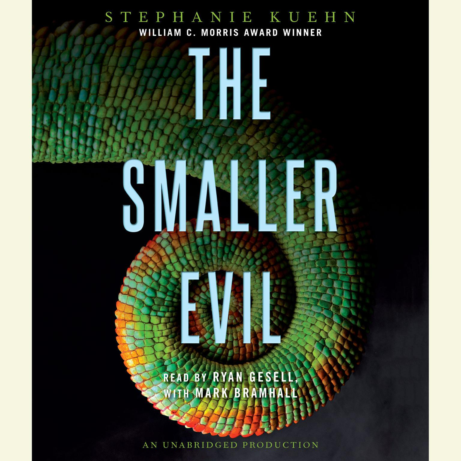 Printable The Smaller Evil Audiobook Cover Art