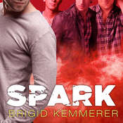 Spark Audiobook, by Brigid Kemmerer