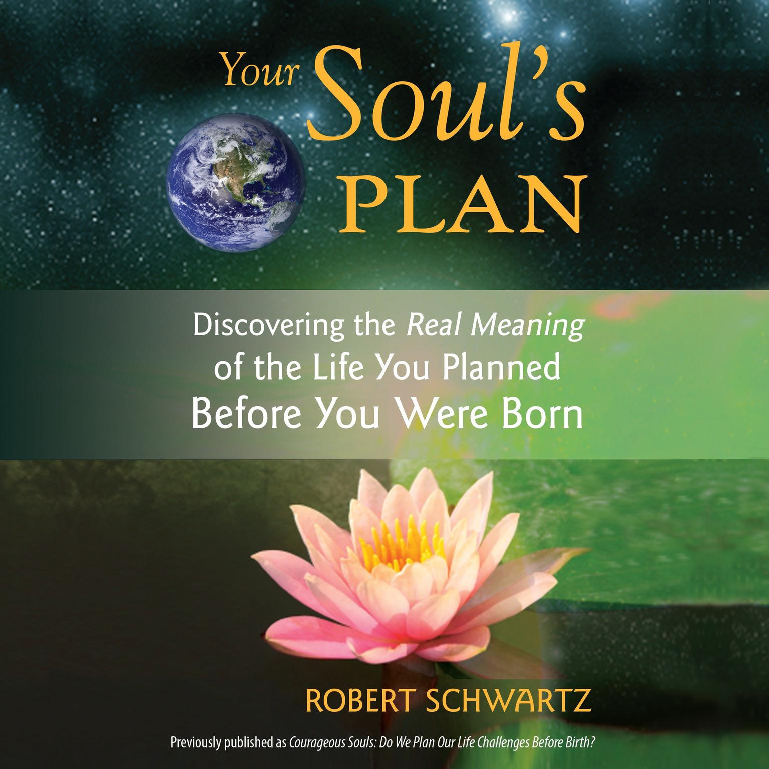 Printable Your Soul's Plan: Discovering the Real Meaning of the Life You Planned Before You Were Born Audiobook Cover Art