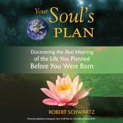 Your Soul's Plan: Discovering the Real Meaning of the Life You Planned Before You Were Born, by Robert Schwartz