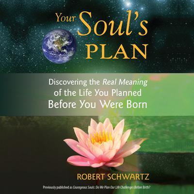 Your Soul's Plan: Discovering the Real Meaning of the Life You Planned Before You Were Born Audiobook, by Robert Schwartz