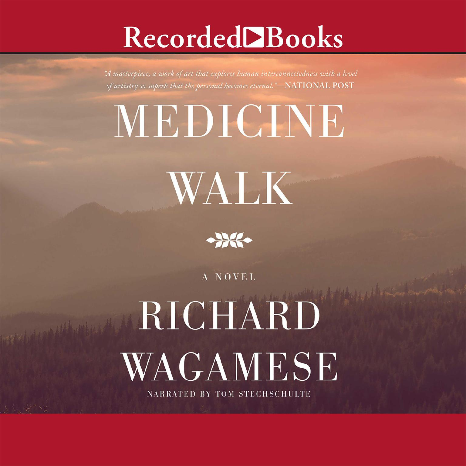 Printable Medicine Walk Audiobook Cover Art