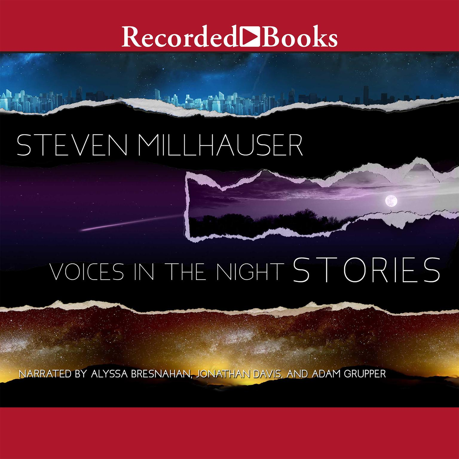 Printable Voices in the Night: Stories Audiobook Cover Art