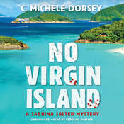 No Virgin Island: A Sabrina Salter Mystery, by C. Michele Dorsey
