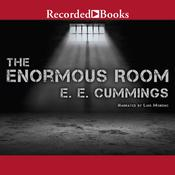 The Enormous Room Audiobook, by E. E. Cummings