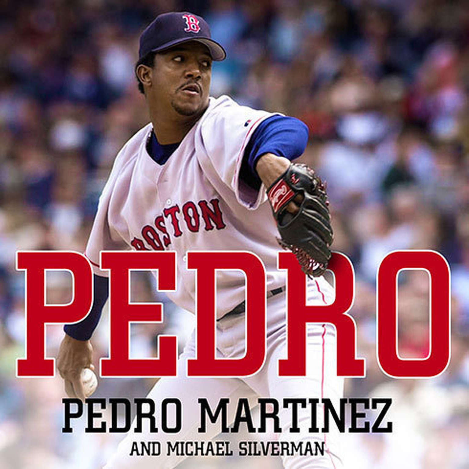 Printable Pedro Audiobook Cover Art