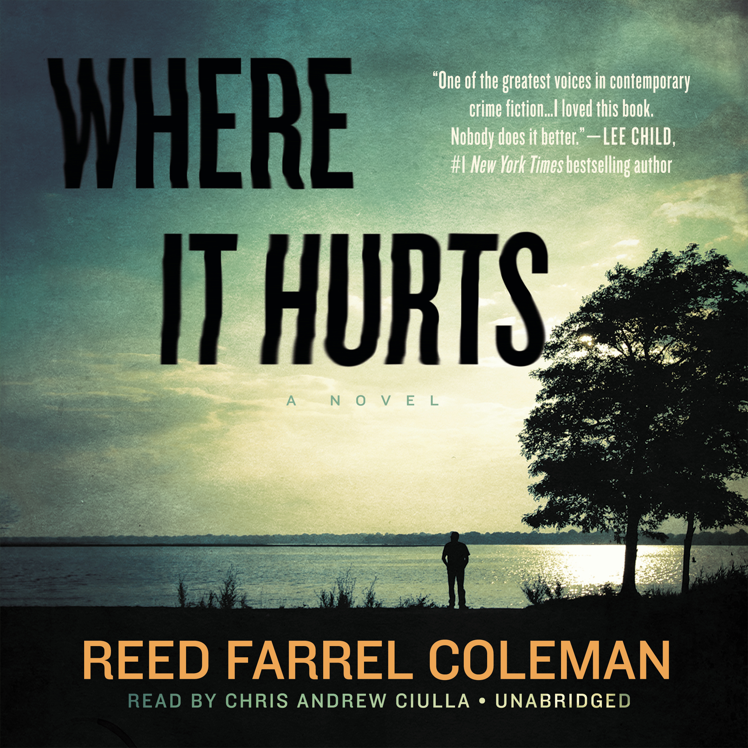 Printable Where It Hurts Audiobook Cover Art