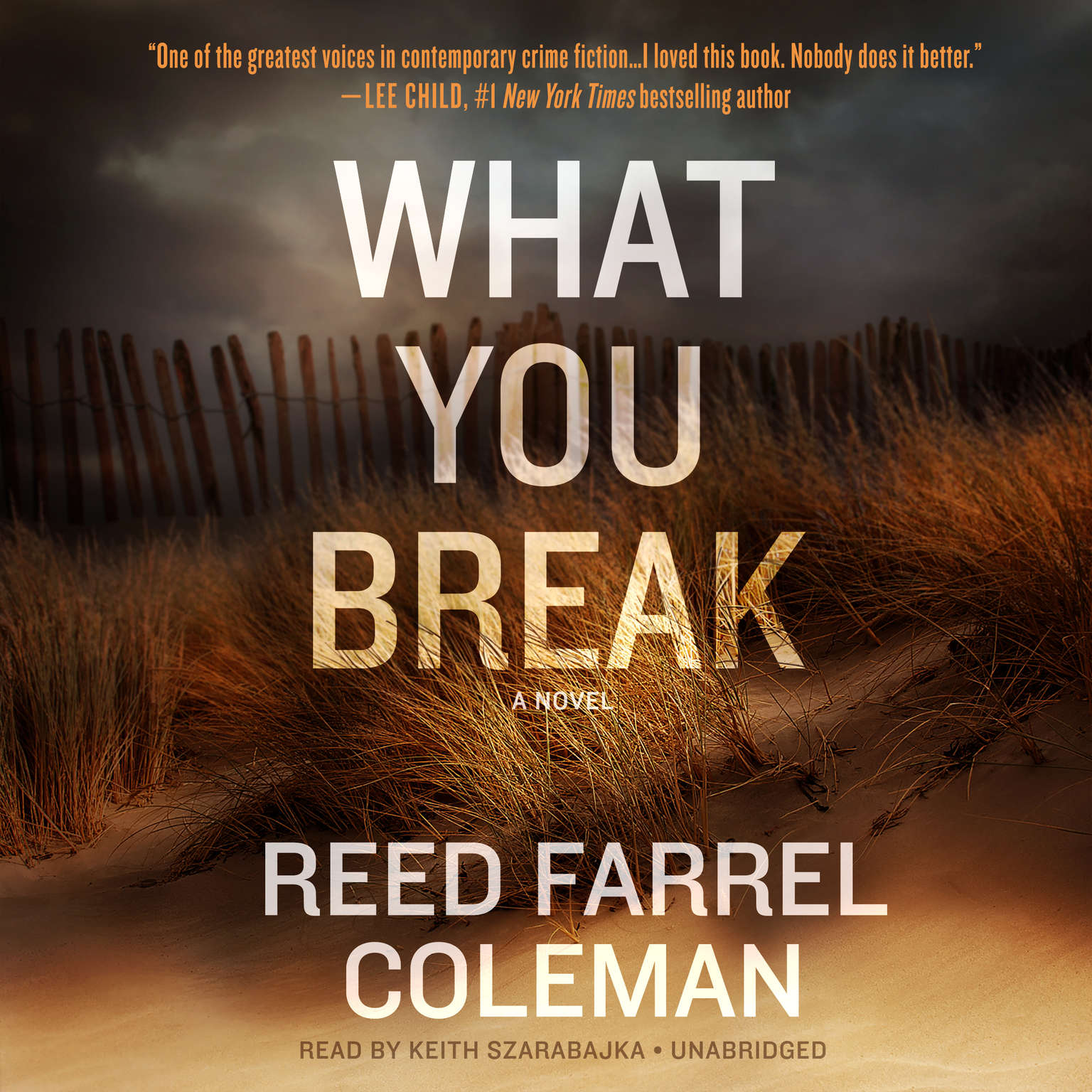 Printable What You Break Audiobook Cover Art