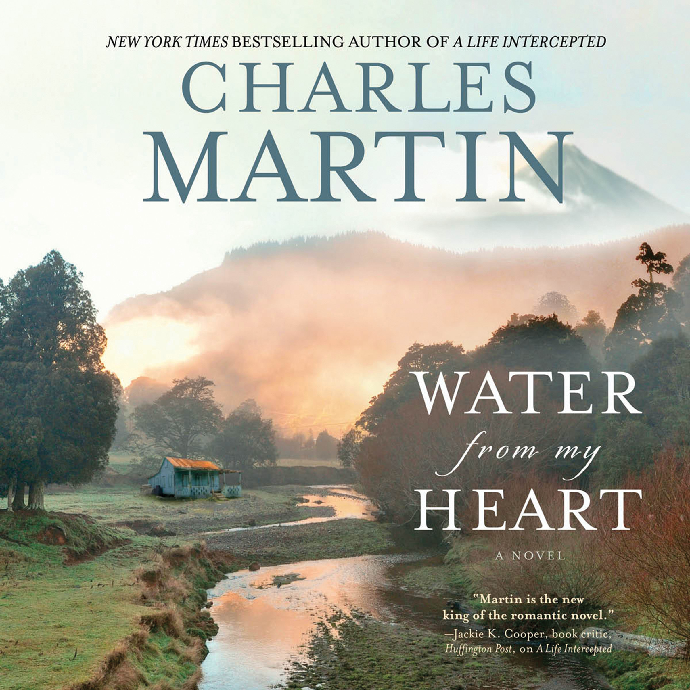 Printable Water from My Heart: A Novel Audiobook Cover Art