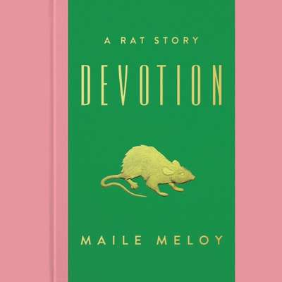Devotion: A Rat Story Audiobook, by Maile Meloy