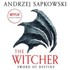 Sword of Destiny Audiobook, by Andrzej Sapkowski