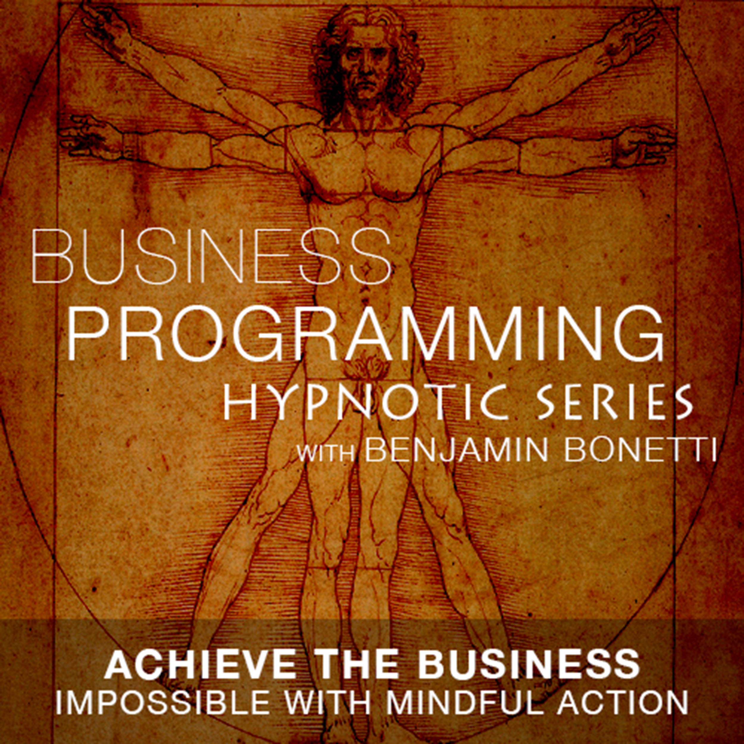 Printable Achieve the Business Impossible with Mindful Action Audiobook Cover Art