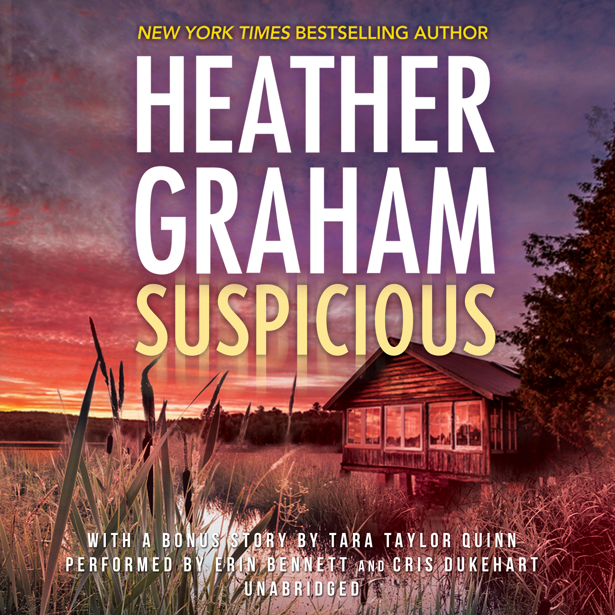 Printable Suspicious Audiobook Cover Art