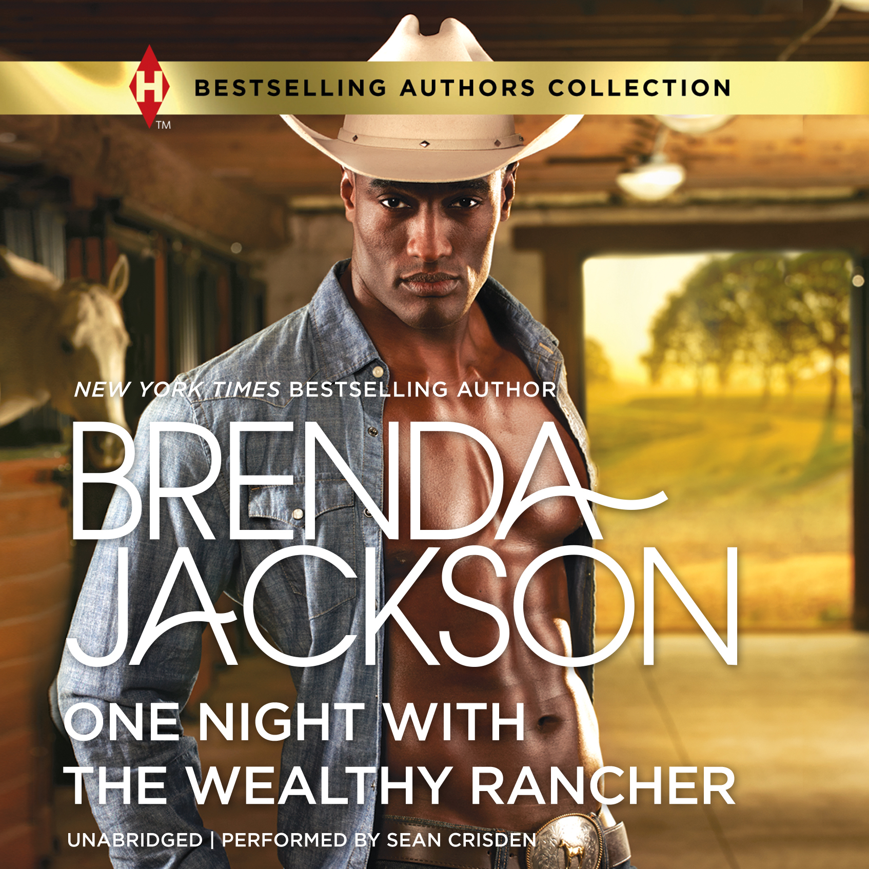 Printable One Night with the Wealthy Rancher Audiobook Cover Art
