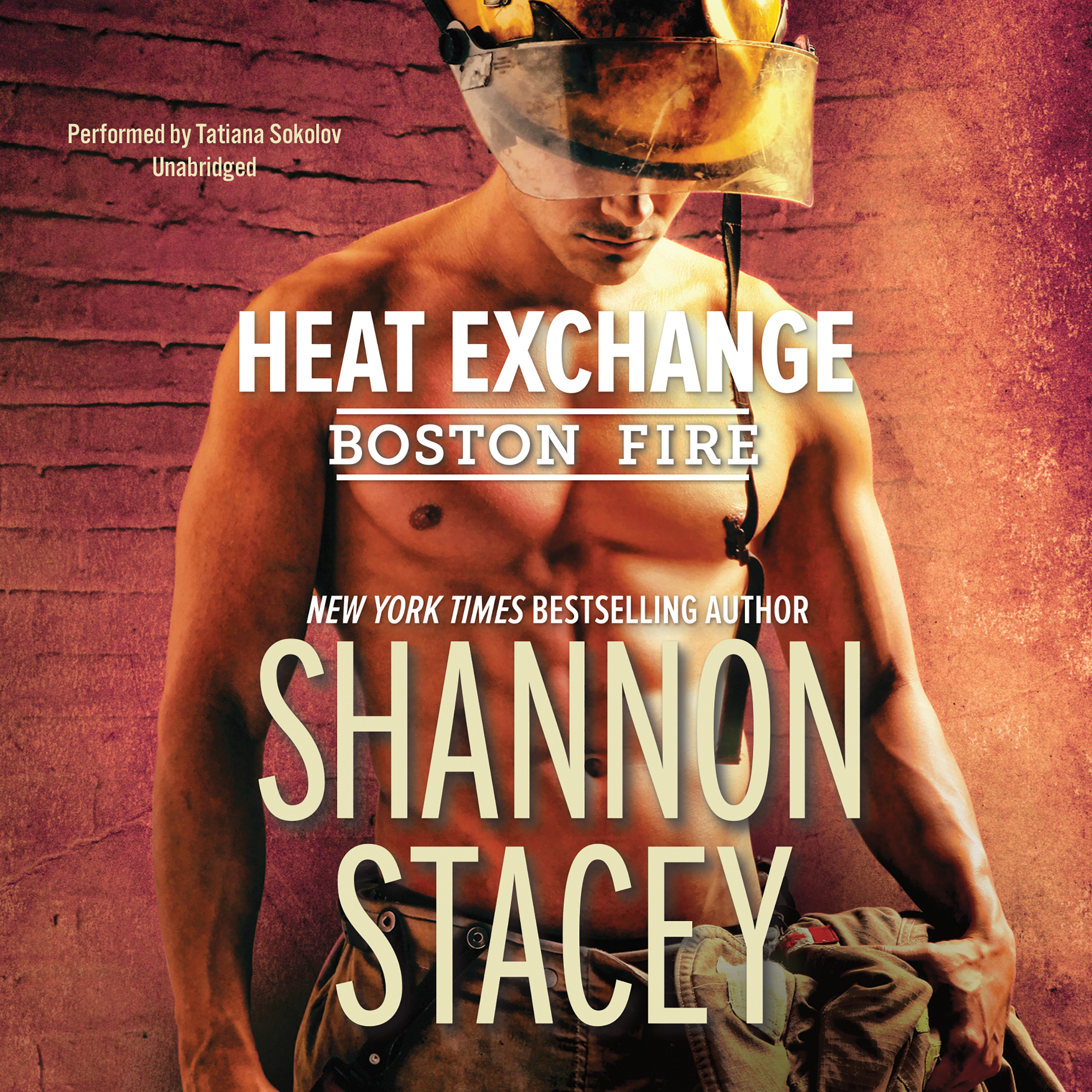 Printable Heat Exchange Audiobook Cover Art