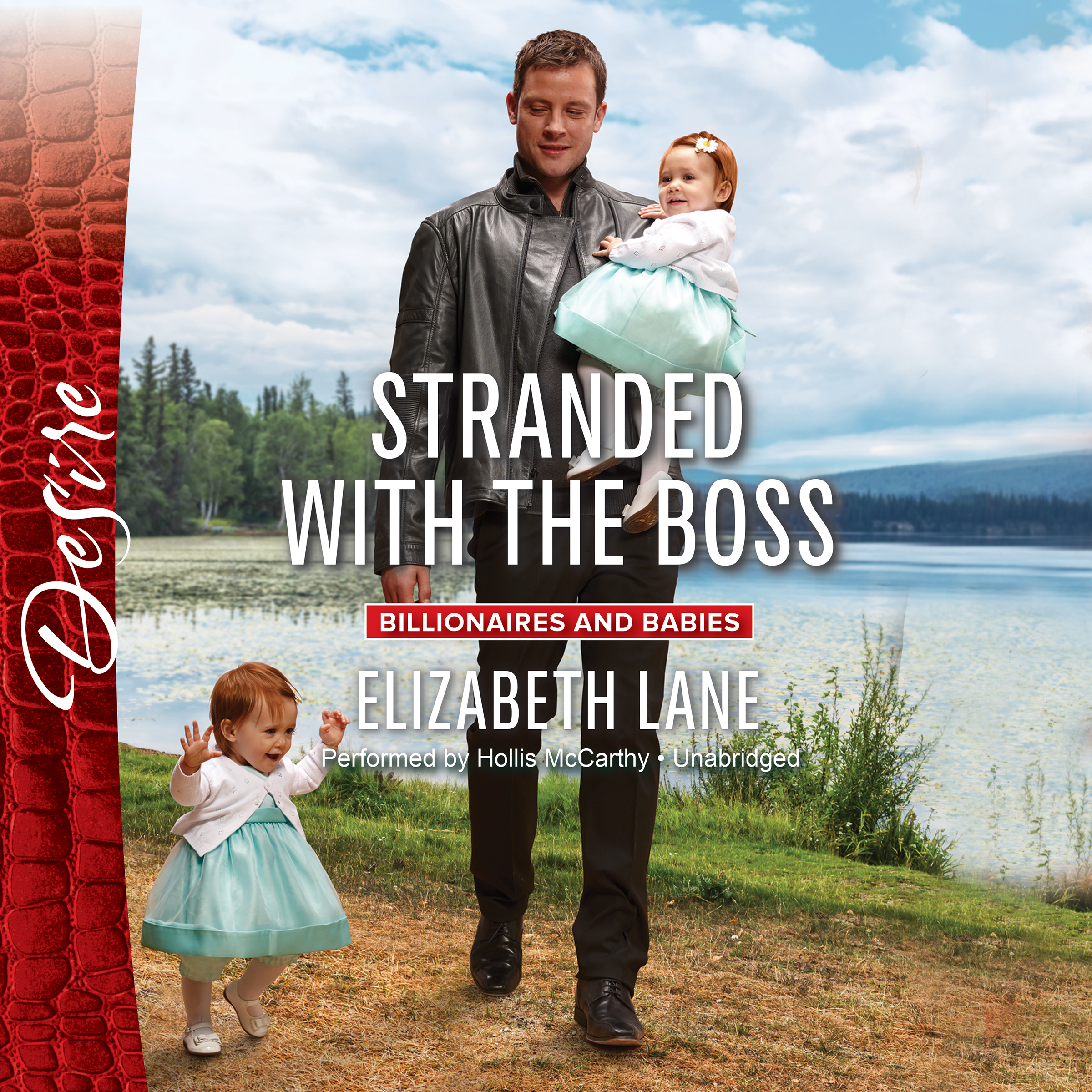 Printable Stranded with the Boss Audiobook Cover Art