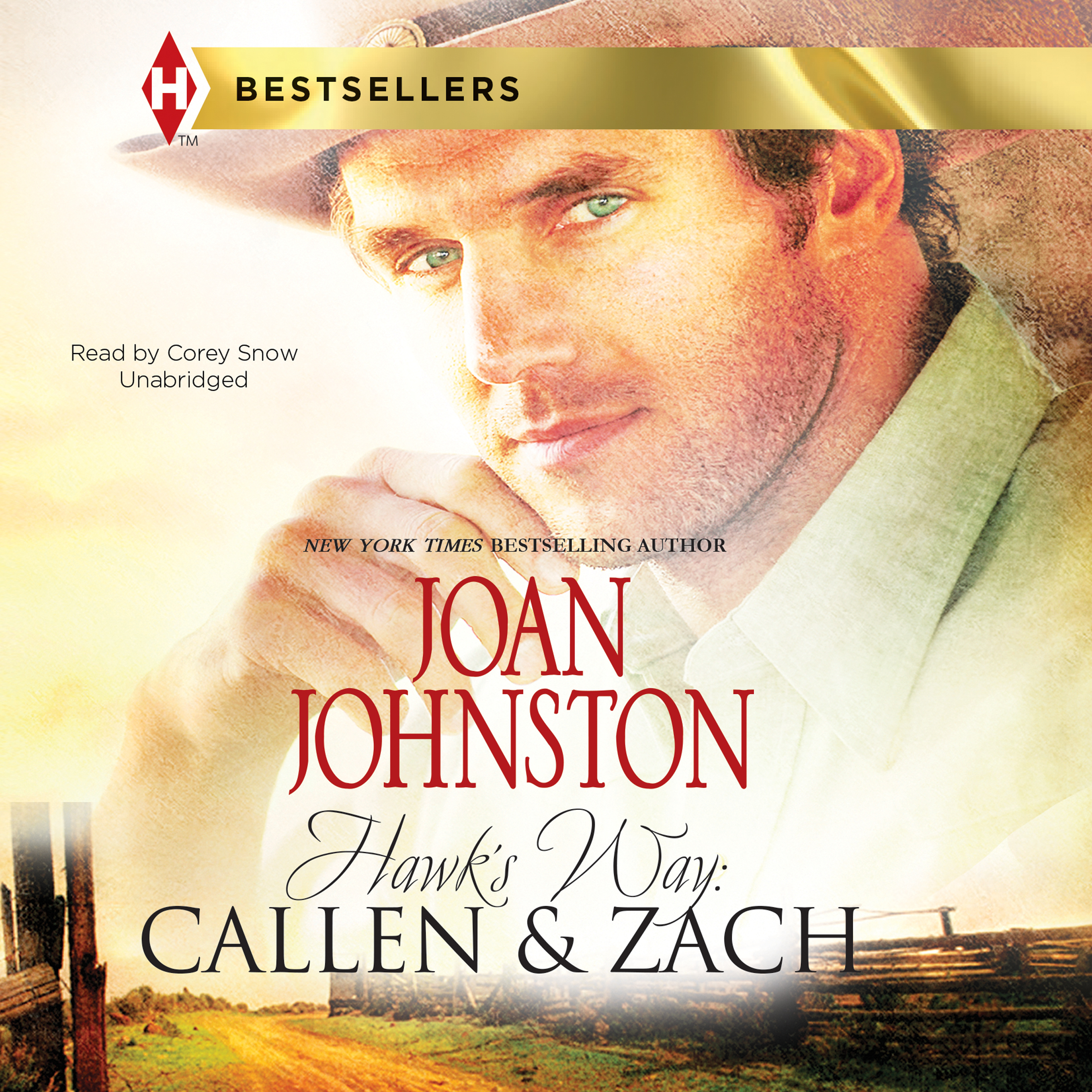 Printable Hawk's Way: Callen & Zach Audiobook Cover Art