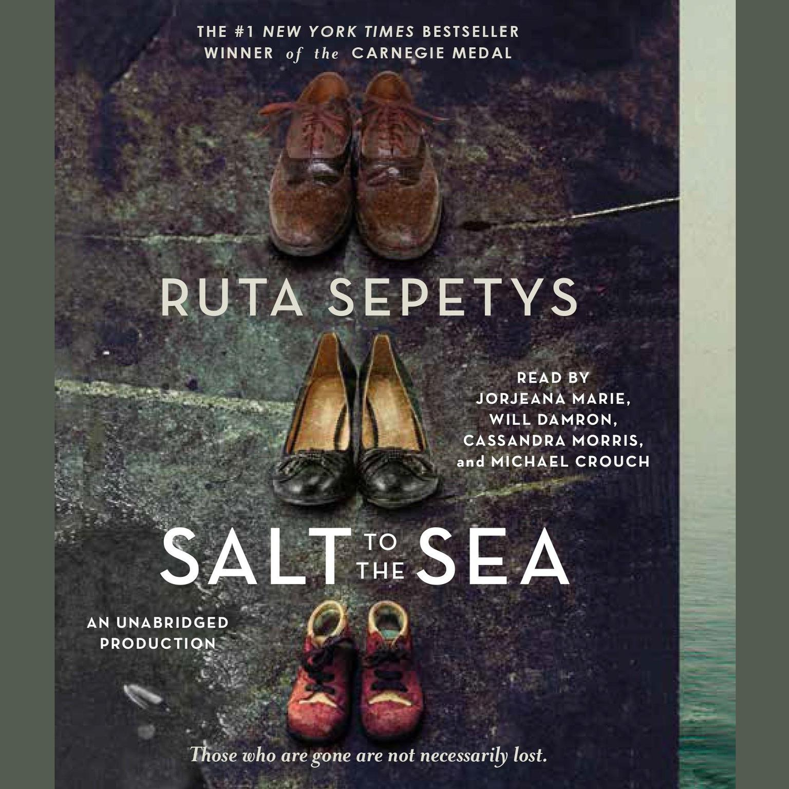 Printable Salt to the Sea: A Novel Audiobook Cover Art
