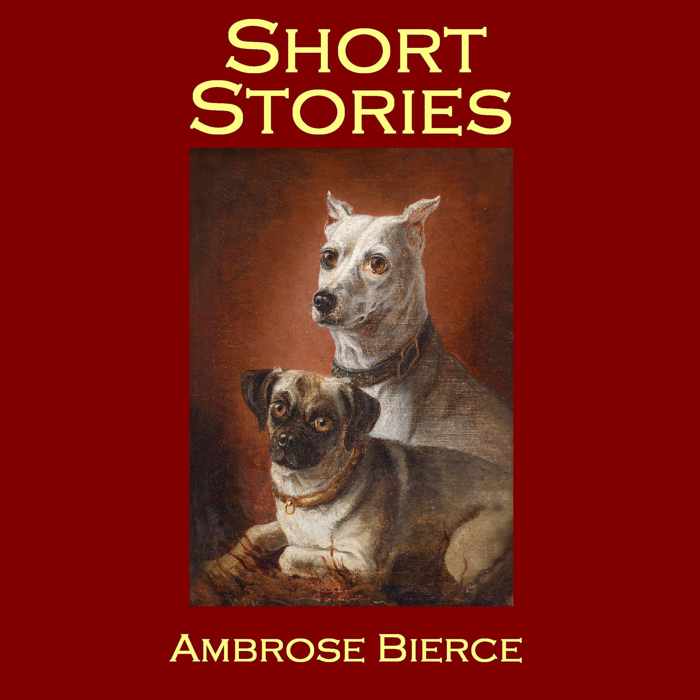 Printable Short Stories Audiobook Cover Art