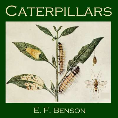 Caterpillars Audiobook, by E. F. Benson