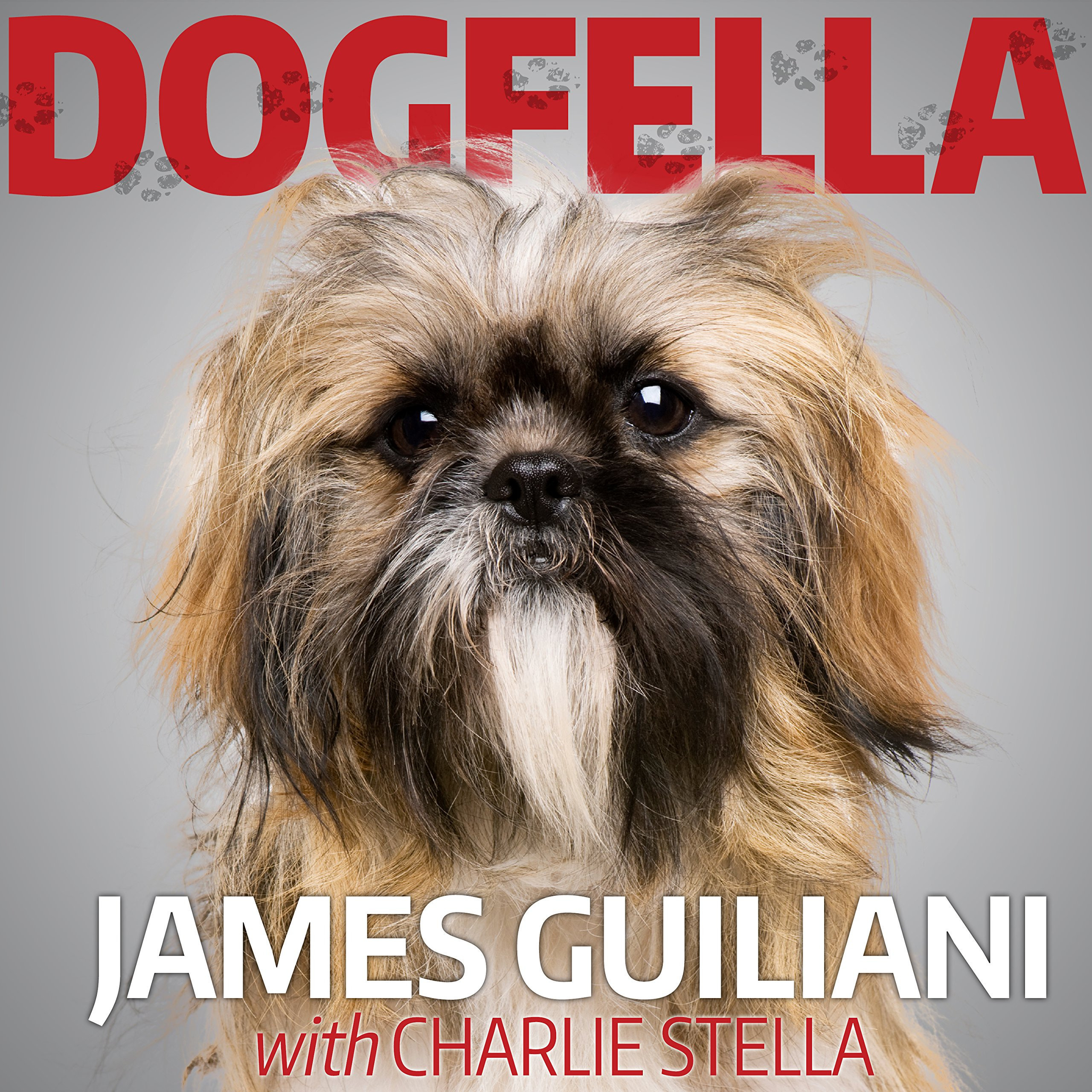 Printable Dogfella: How an Abandoned Dog Named Bruno Turned This Mobster's Life Around--A Memoir Audiobook Cover Art