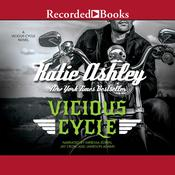 Vicious Cycle, by Katie Ashley