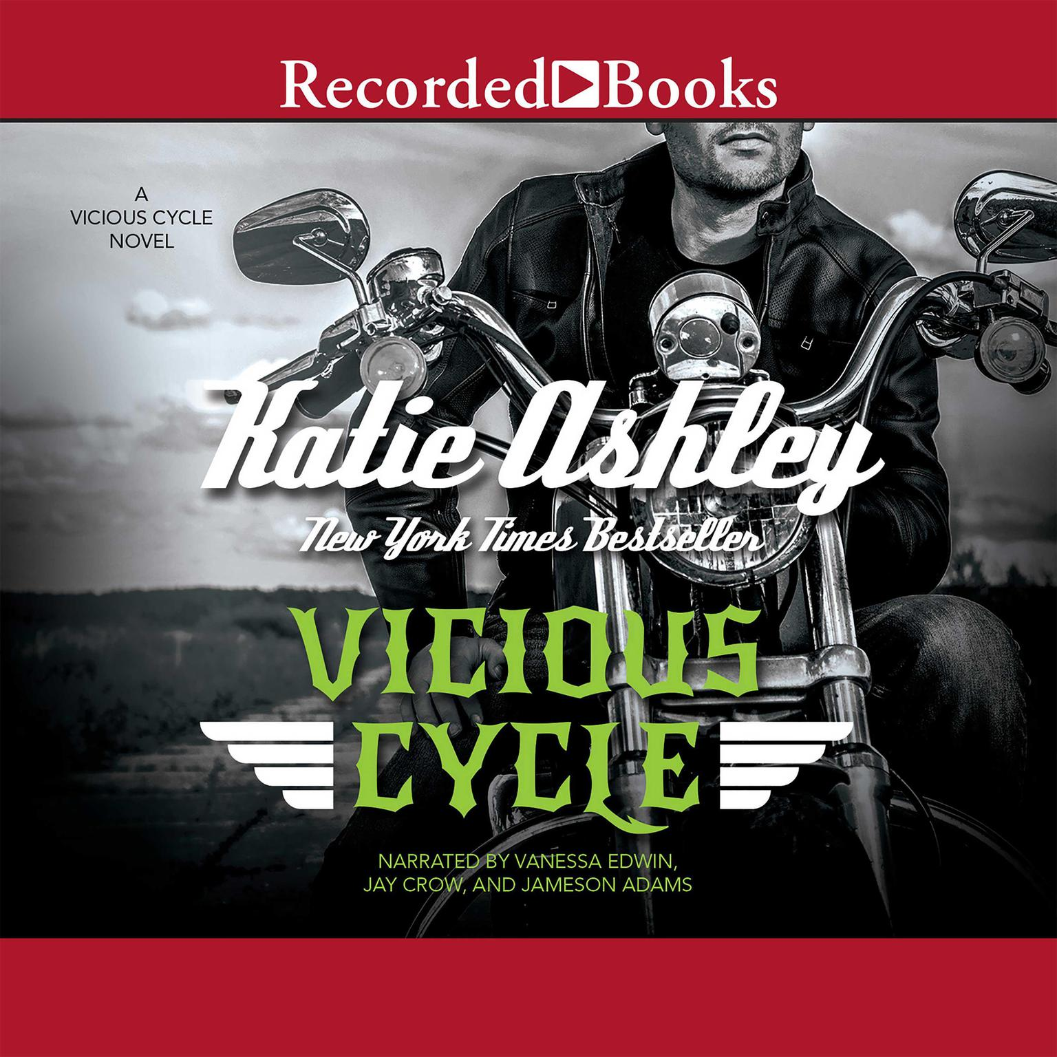 Printable Vicious Cycle Audiobook Cover Art