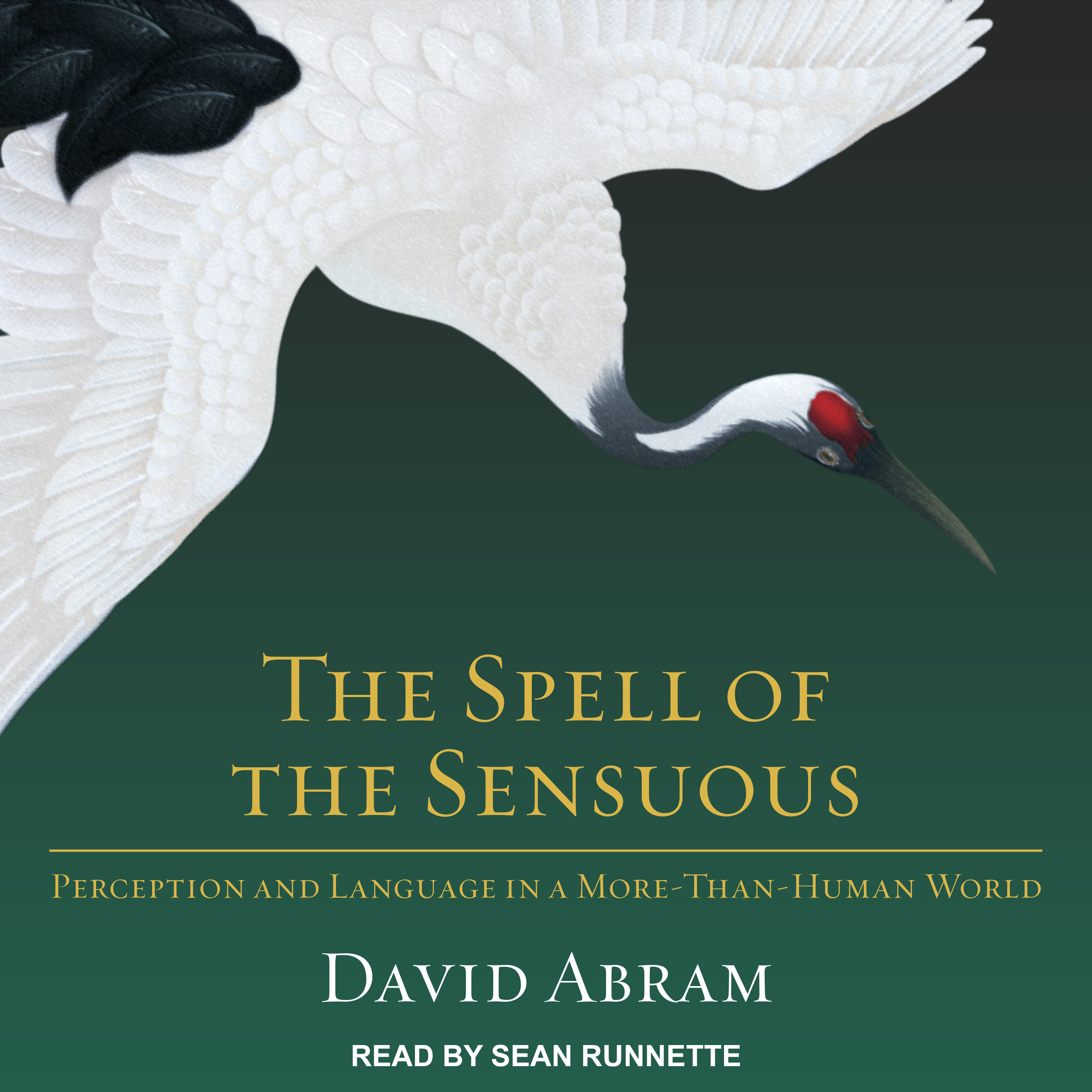 Printable The Spell of the Sensuous: Perception and Language in a More-Than-Human World Audiobook Cover Art