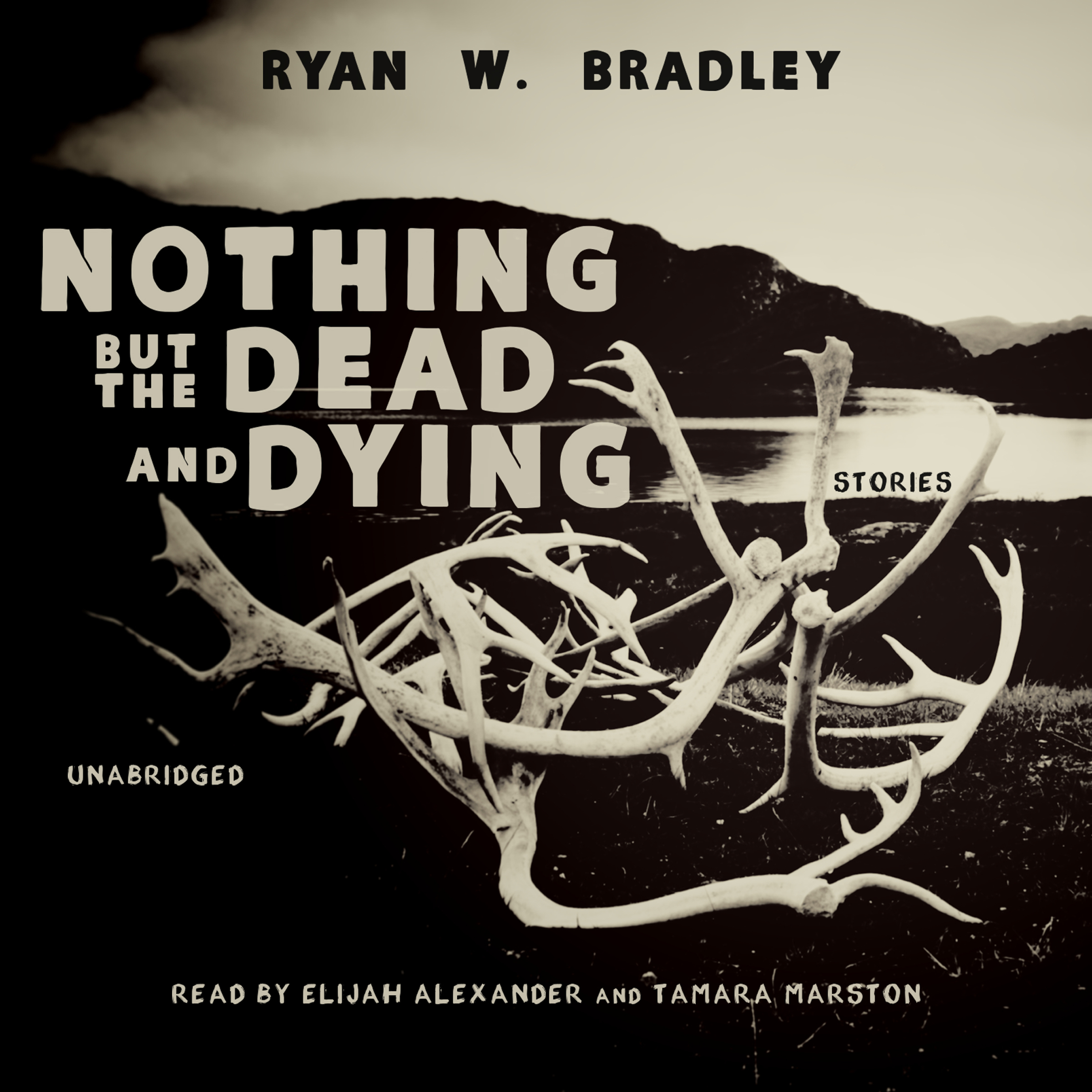Printable Nothing but the Dead and Dying Audiobook Cover Art