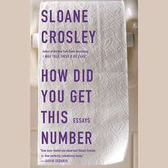 How Did You Get This Number Audiobook, by Sloane Crosley