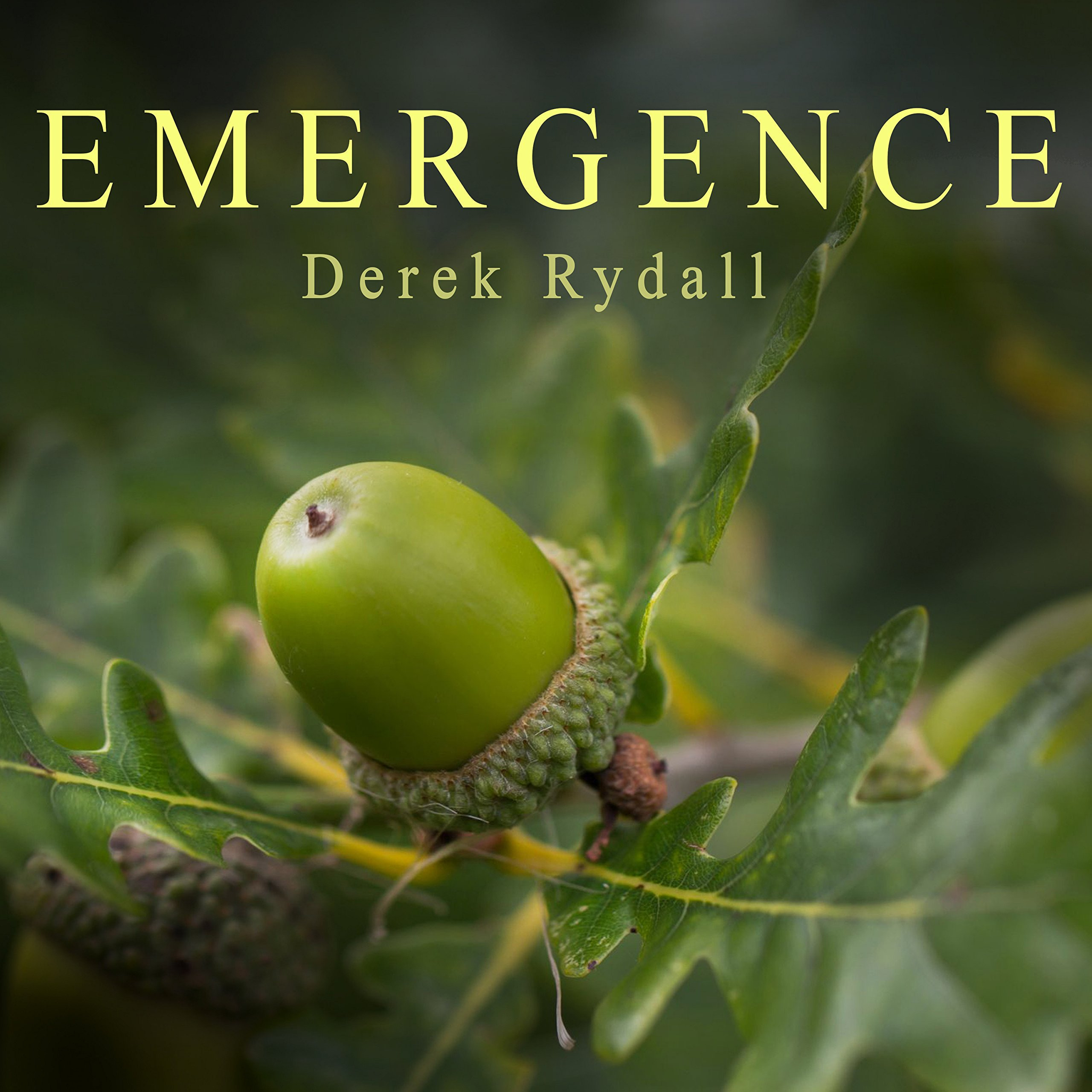 Printable Emergence: Seven Steps for Radical Life Change Audiobook Cover Art