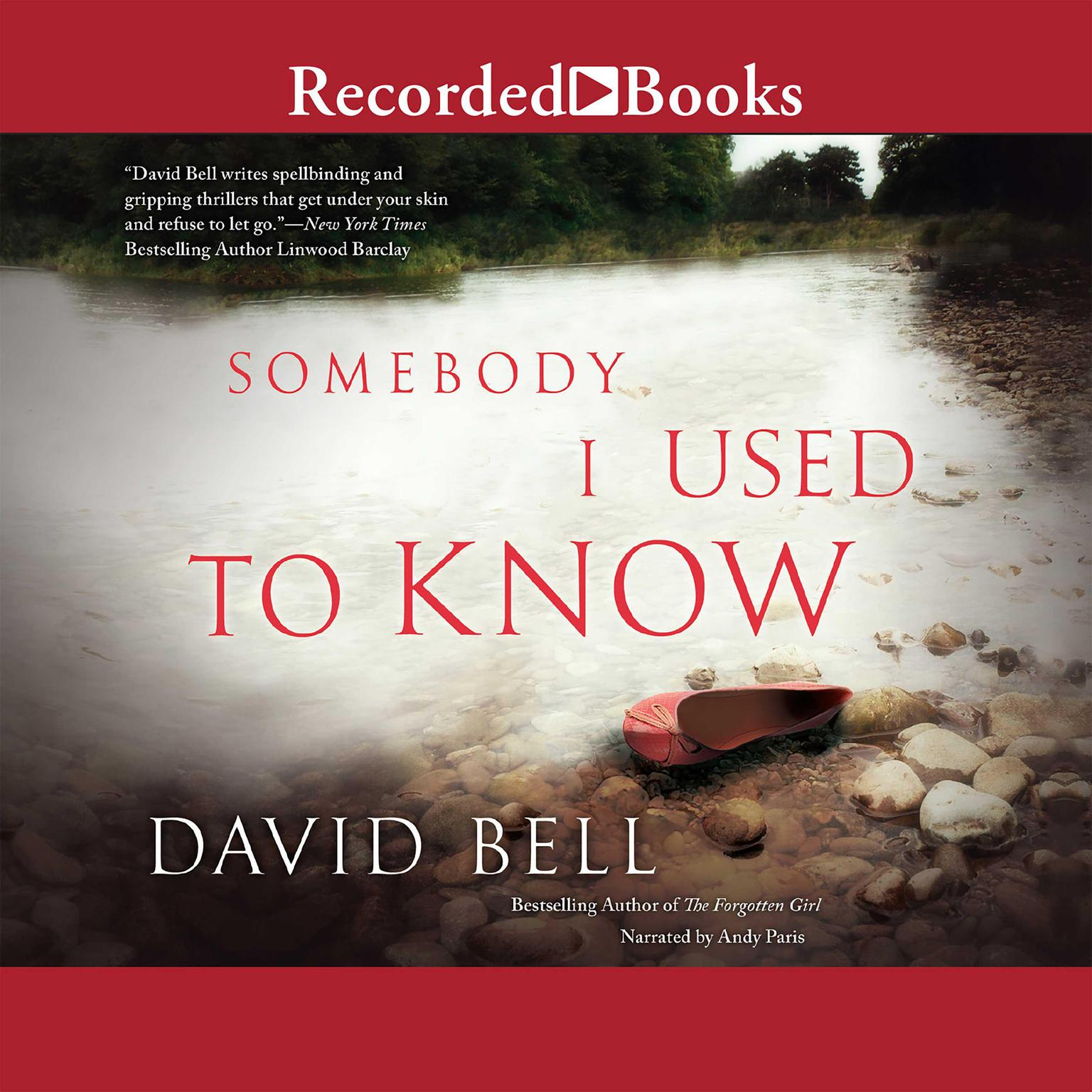 Printable Somebody I Used to Know Audiobook Cover Art