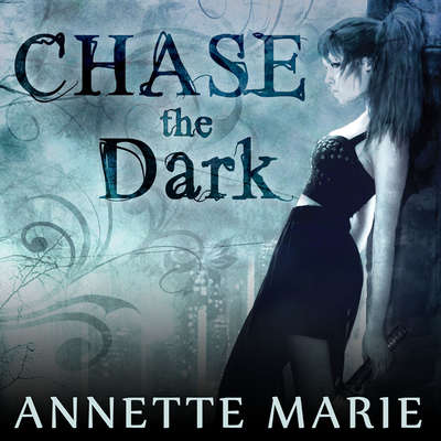 Chase the Dark: Book One of the Steel & Stone Series Audiobook, by Annette Marie