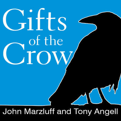 Gifts of the Crow: How Perception, Emotion, and Thought Allow Smart Birds to Behave Like Humans Audiobook, by Tony Angell