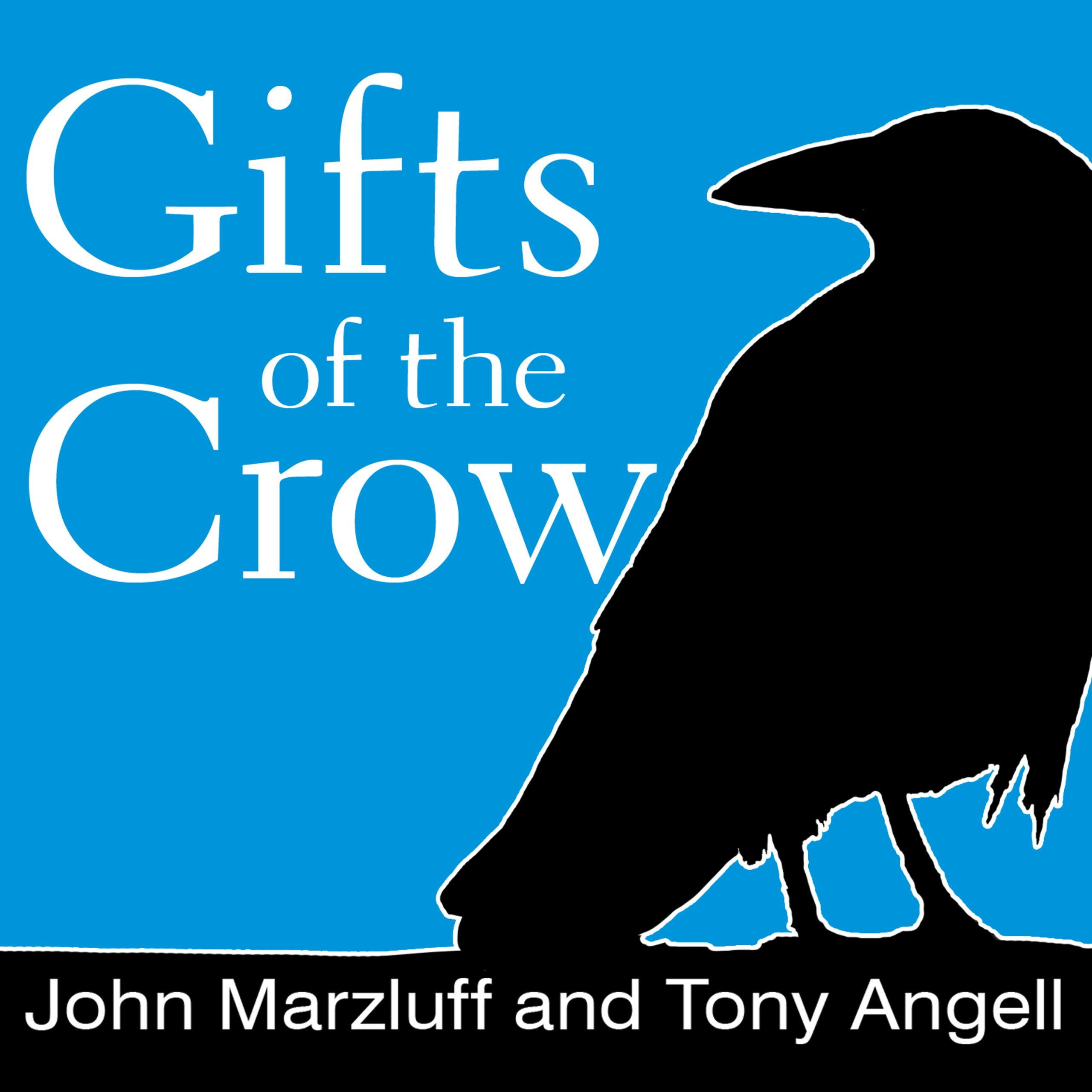 Printable Gifts of the Crow: How Perception, Emotion, and Thought Allow Smart Birds to Behave Like Humans Audiobook Cover Art