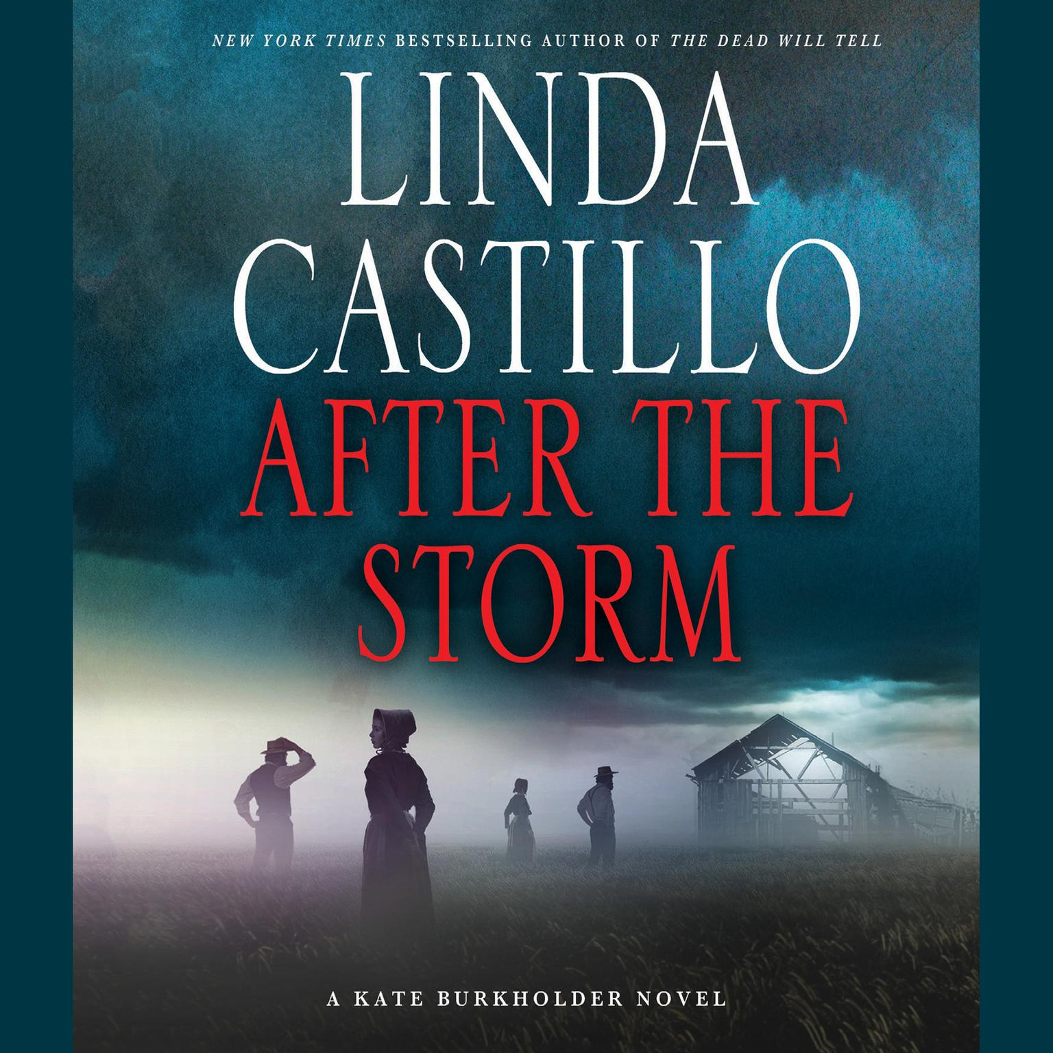 Printable After the Storm: A Kate Burkholder Novel Audiobook Cover Art