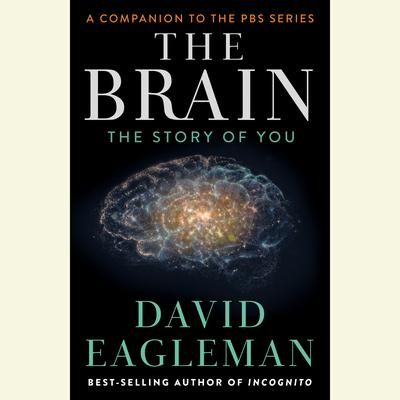 The Brain: The Story of You Audiobook, by David Eagleman